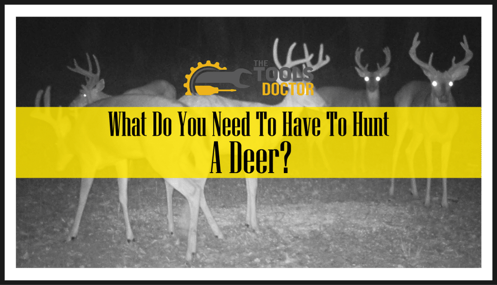 What Do You Need To Have To Hunt A Deer